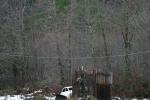 reindeer_091.png