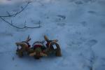 reindeer_182.png